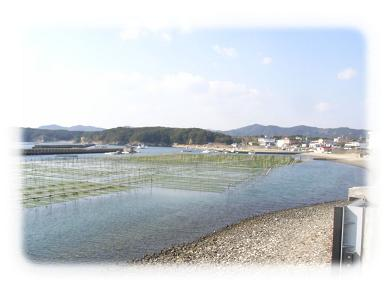 伊勢 海3.JPG