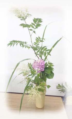 紫陽花.jpg7.jpg